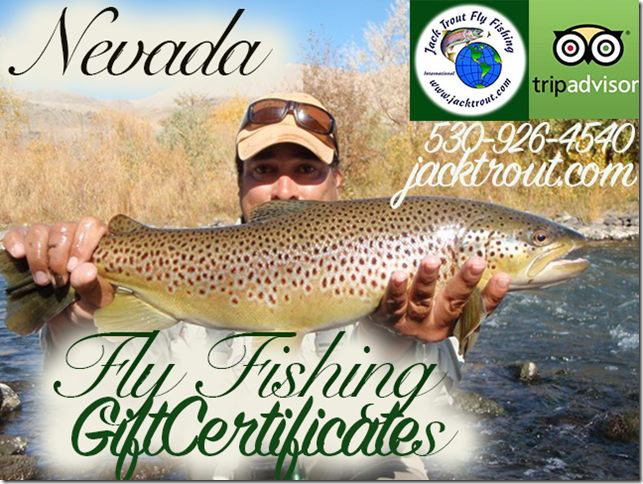 Nevada Gift Certificates