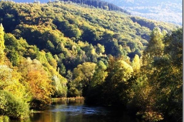 river-ribnikA4AE35DE-DFAE-87D7-4907-E693234CF26E.jpg