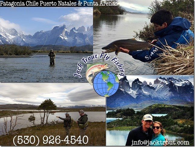 Chile Puerto Natales Arenas Banner