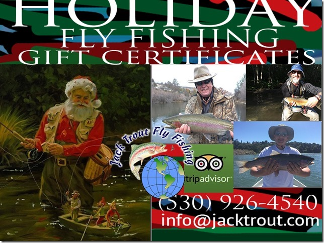 Holiday Gift Cert Banner 2016