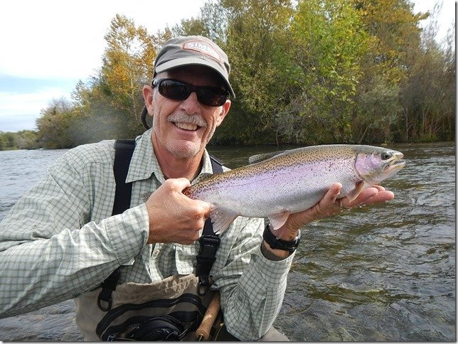 Lower Feather River Steelhead 5