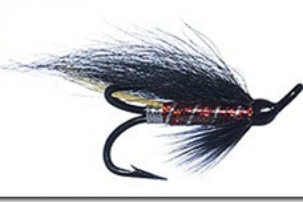 salmon-flies01042B53780F-7CCE-C7E9-F9AF-3A2CFD9CC685.jpg