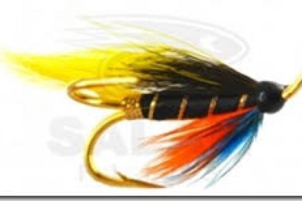 salmon-flies325EF0DC-1857-D01A-8827-DDB7647B8CF6.jpg
