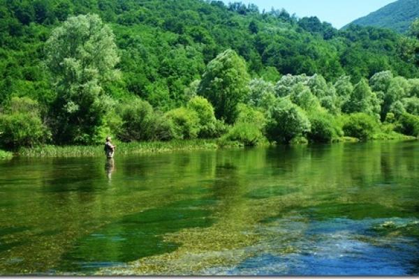 great-spot-river-ribnik1946036B-1559-806F-FC6C-40179FDFFF40.jpg