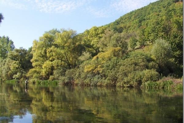river-ribnik-spot-3532D5611-1EE0-76C8-B843-8961FB292536.jpg